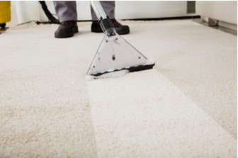 dirty carpet being cleaned with steam cleaner