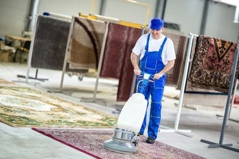 cleaning and deodorizing area rug
